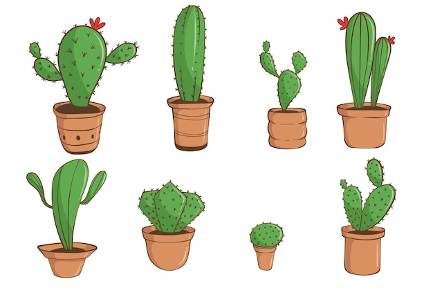 Set of hand drawn cactus in white background.