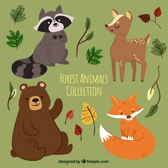 Set of hand drawn forest animals with leaves