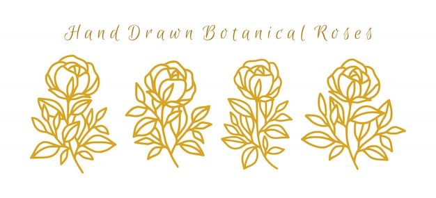Set of hand drawn gold summer rose logo element