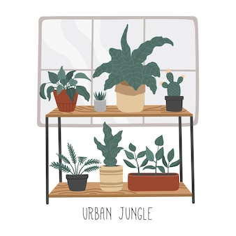 Set of hand drawn house plants, urban jungle in flat cartoon style, home decoration. scandinavian cozy interior.