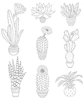 Set of hand drawn houseplant