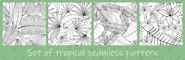 Set of hand drawn jungle exotic leaves with contour in black and white colors