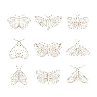 Set of hand drawn moth.