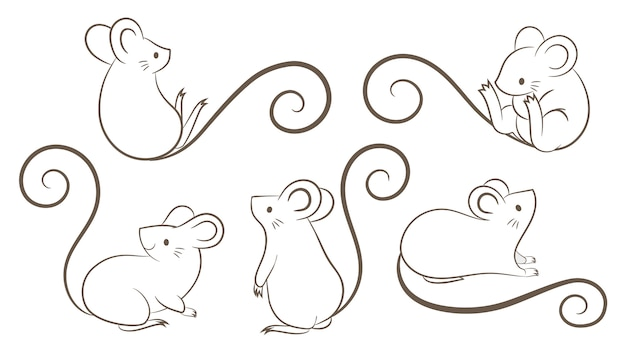 Set of hand drawn rats, mouse in different poses on white bacground