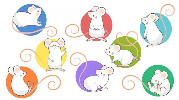 Set of hand drawn rats, mouse in different poses on white bacground.