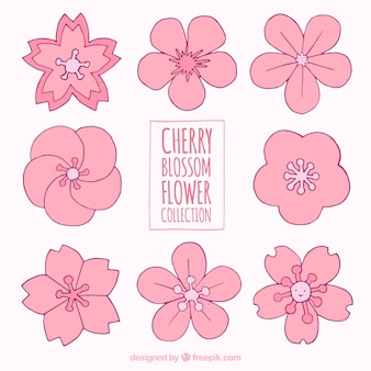 Set of hand-drawn spring flowers