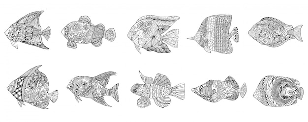 Set of hand drawn stylized fish with doodle, vintage elements with waved pattern