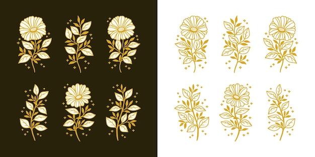 Set of hand drawn vintage botanical daisy gerbera flower and floral leaf branch line art elements