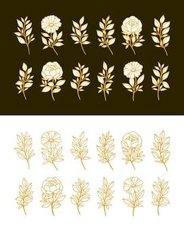 Set of hand drawn vintage botanical peony rose flower and floral leaf branch line art elements