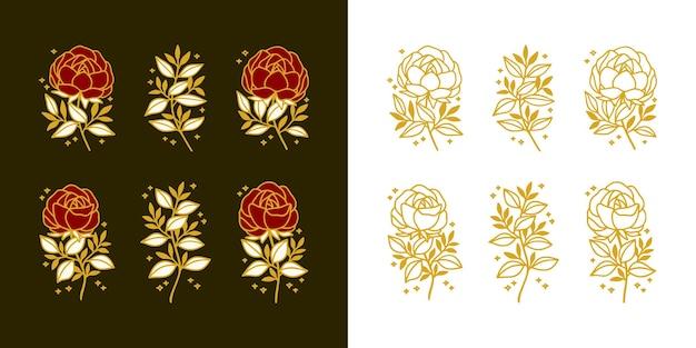 Set of hand drawn vintage botanical peony, rose flower, and floral leaf branch line art elements