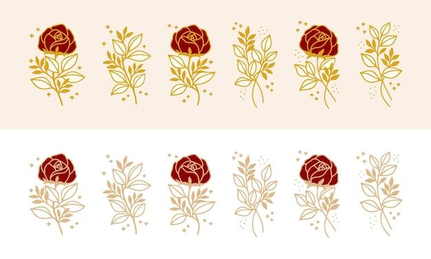 Set of hand drawn vintage botanical rose flower, and floral leaf branch line art elements