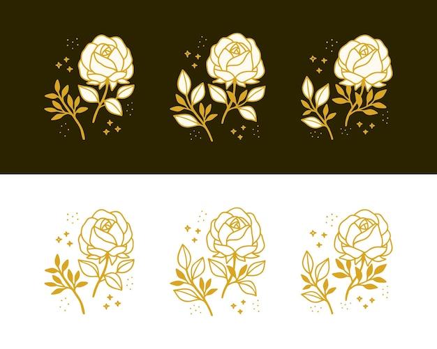 Set of hand drawn vintage botanical rose flower and floral leaf branch line art elements