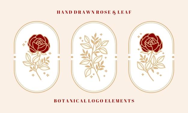 Set of hand drawn vintage botanical rose flower and leaf branch elements