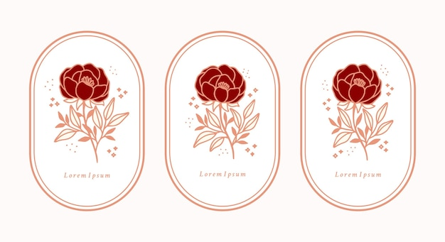 Set of hand drawn vintage botanical rose flower peony and leaf branch elements for feminine logo and beauty brand
