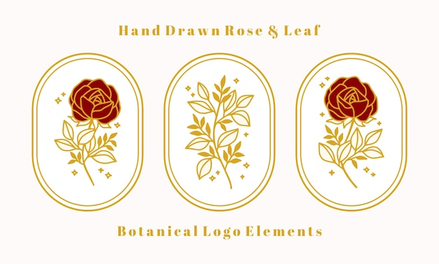 Set of hand drawn vintage gold botanical rose flower elements for feminine logo and beauty brand