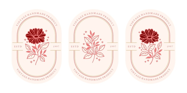 Set of hand drawn vintage pink botanical daisy flower and leaf branch elements