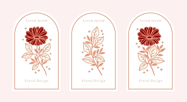 Set of hand drawn vintage pink botanical daisy and gerbera flower elements