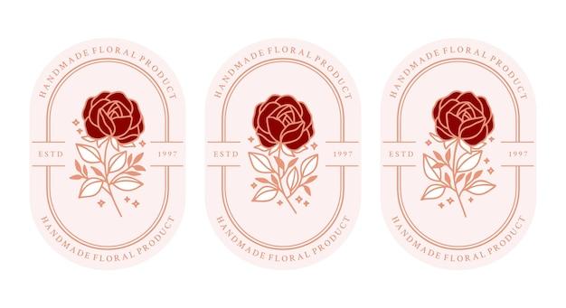 Set of hand drawn vintage pink botanical rose flower and leaf branch elements
