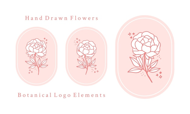 Set of hand drawn vintage pink botanical rose flower, peony and leaf branch elements for feminine logo and beauty brand