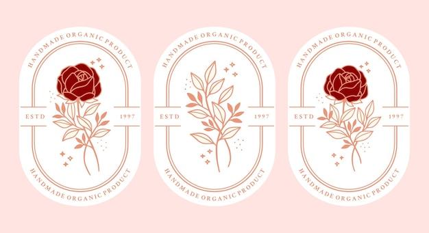 Set of hand drawn vintage pink botanical rose flower