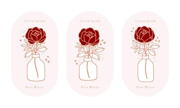 Set of hand drawn vintage pink botanical rose flower,