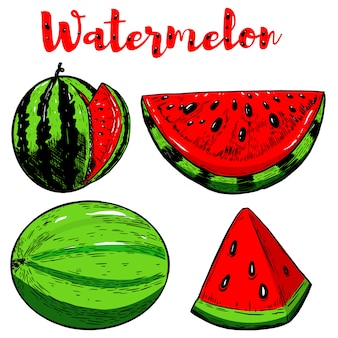 Set of hand drawn watermelon illustrations on white background.  elements for poster, menu, flyer.  illustration