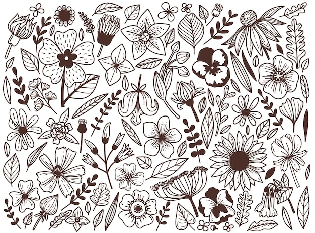 Set of hand-drawn wildflowers in a graphic style.