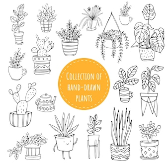 Set of handdrawn funny plants in pots