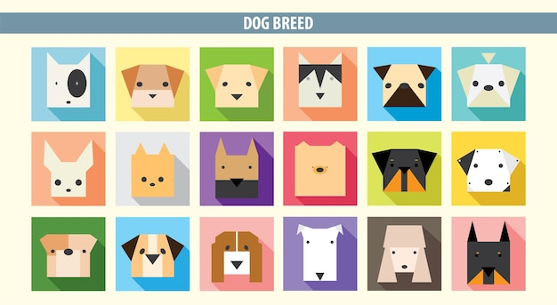 Set of head's dog breed