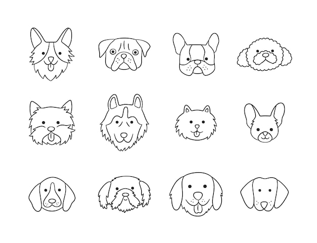 Set of heads of different breeds dogs