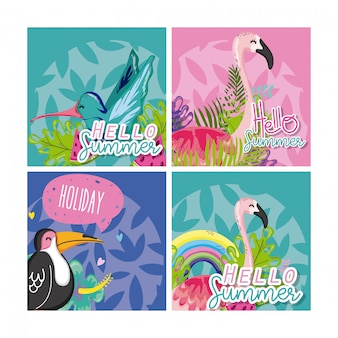 Set of hello summer birds