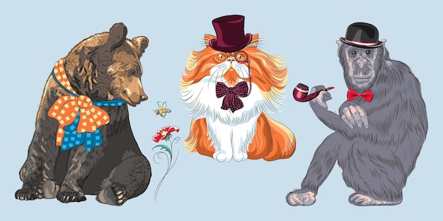 Set of hipster animals. monkey in bowler hat and bow tie with tobacco pipe, bear with bow, red fluffy persian cat in hat, glasses and bow tie