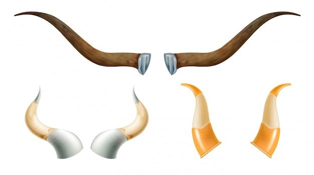 Set of horns of wild animals.