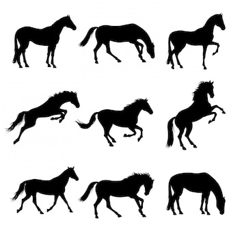 Set horses silhouettes collection isolated on white