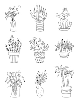 Set of house plants isolated vector outline sketch of plant in pot illustration