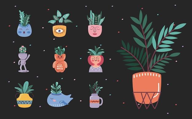 Set of house plants in pots, scandinavian style