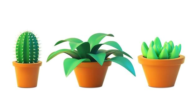 냄비에 관엽 식물 선인장과 즙을 설정하십시오. 3d 일러스트레이션