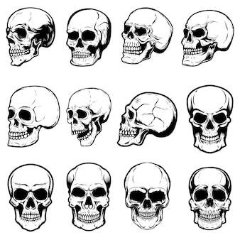 Set of human skull illustrations on white background.  element for label, emblem, sign,logo, poster.  image