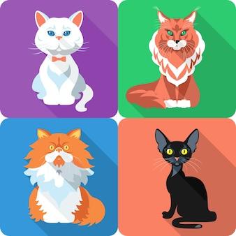 アイコンフラットデザインの英国とペルシャの猫ボンベイ猫とメインクーンを設定します