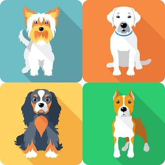 Установить значок плоский дизайн собак разных пород кавалер кинг чарльз спаниель