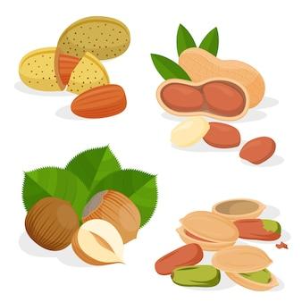 Набор иконок орехов и семян