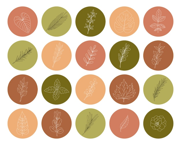 A set of icons on a round shape with twigs and leaves drawn by hand. a collection of botanical decorative elements in green and pink tones for social media profiles and web design. vector illustration