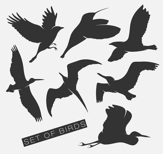 Set of illustrations silhouettes of birds gulls. Premium Vector