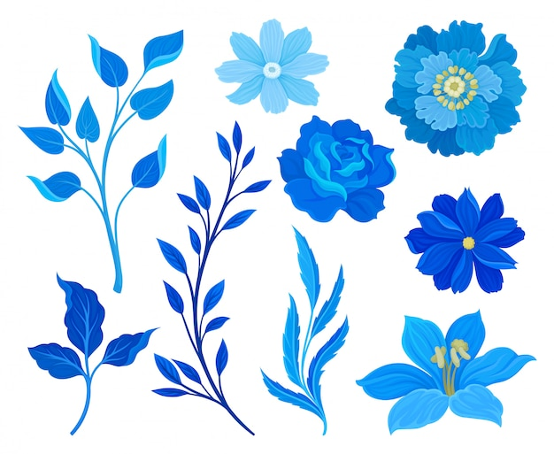 Set of images of blue flowers and leaves.  illustration on white background.
