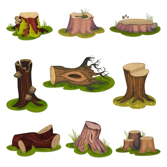 Set of images of stumps and snags.