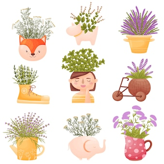 Set of images of wild flowers in cute pots and vases.