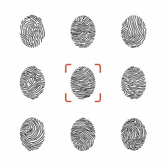 Set of individual fingerprints for personal identification. vector illustrations