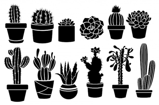 Set of indoor cacti in pots. collection of stylized thorny plant sills. decorative pots.