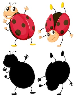Set of insect cartoon character and its silhouette