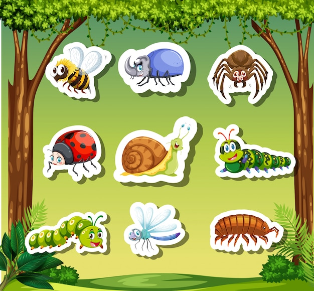 Set insect sticker template